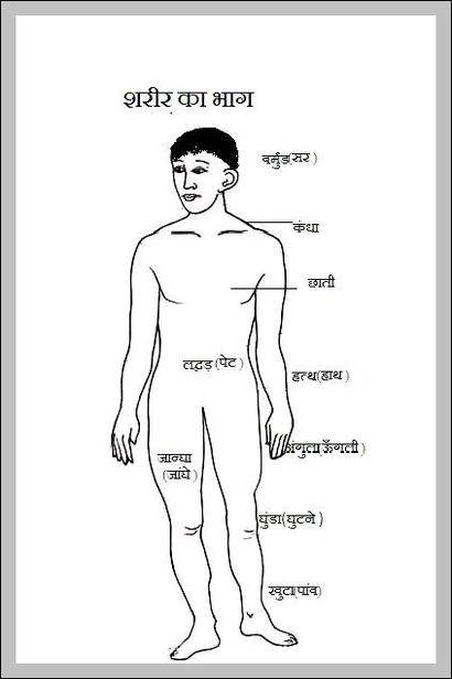 Human body diagram blank | Graph Diagram