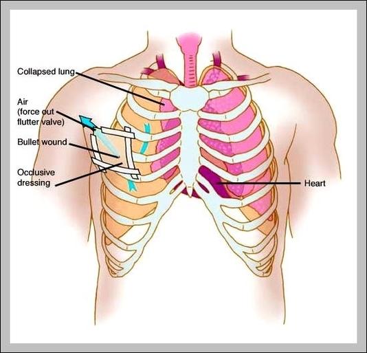 Anatomy Graph Diagram Page 40